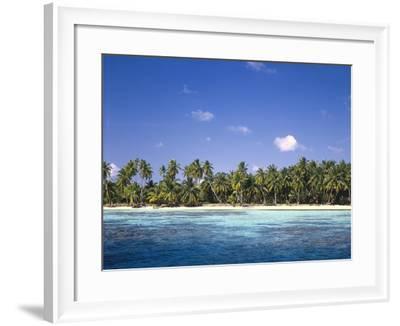 Malediven, Meer, Palmenstrand, Indischer Ozean, Palmeninsel, Detail, Strand-Thonig-Framed Photographic Print