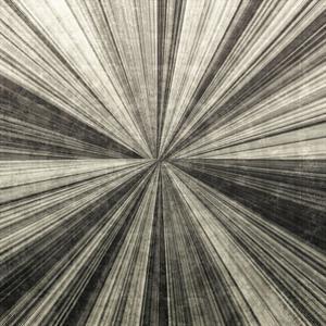 Silver Burst by Mali Nave