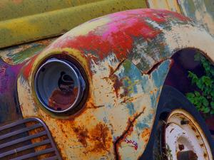 Detail of an Abandoned Chevrolet Truck Headlight by Mallorie Ostrowitz