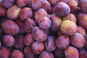 Display of Red Plums in the Caldas Da Rainha Open Air Market in Portugal by Mallorie Ostrowitz