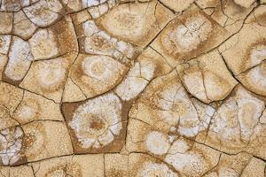 Dried, cracked earth and salt create the patterns on the flats of Death Valley National Park. by Mallorie Ostrowitz