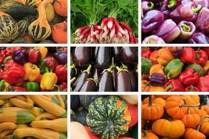 Farmers Market Produce, Connecticut by Mallorie Ostrowitz