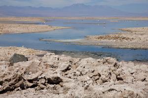 In the Atacama Desert Is the National Reserve of Atacama Salt Lake by Mallorie Ostrowitz