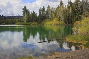 Lake located at the northeast corner of Lassen Volcanic Park in Northern California. by Mallorie Ostrowitz