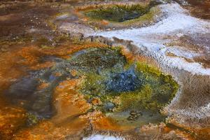 Located in the vast pools of geothermal activity at El Tatio by Mallorie Ostrowitz