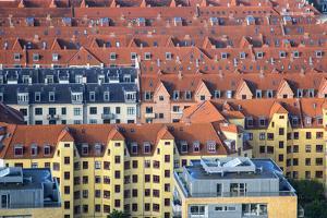 Overlooking the rooftops of Copenhagen by Mallorie Ostrowitz