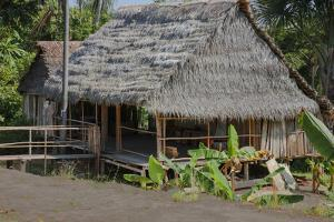 Thatched Roof Home Made of Leaves in the Peruvian Town of Amazonas by Mallorie Ostrowitz