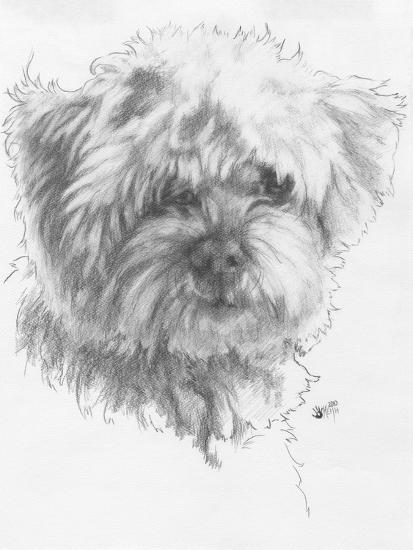 Maltipoo-Barbara Keith-Giclee Print