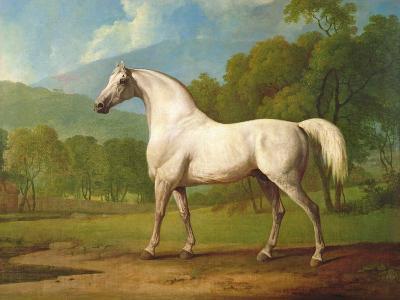 """Mambrino"", C.1790-George Stubbs-Giclee Print"