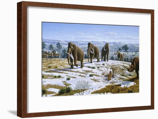 Mammals of the Pleistocene Era-Mauricio Anton-Framed Photographic Print