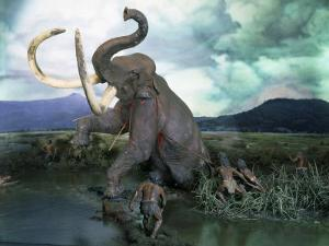 Mammoth Hunt, Lower Paleolithic era, Reconstruction