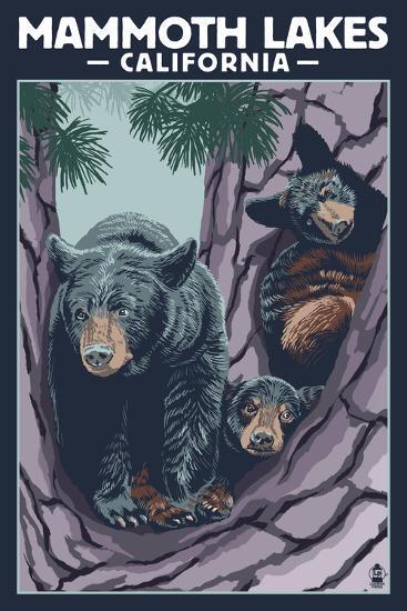 Mammoth Mountain, California - Black Bear and Cubs in Tree-Lantern Press-Art Print