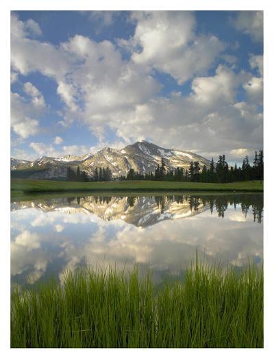 Mammoth Peak and scattered clouds reflected in lake, Yosemite National Park, California-Tim Fitzharris-Art Print
