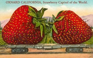 Mammoth Strawberry on Traincar, Oxnard, California