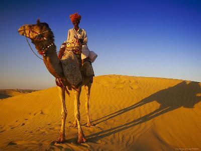 Man Atop Camel, Thar Desert, Rajasthan, India-Peter Adams-Photographic Print
