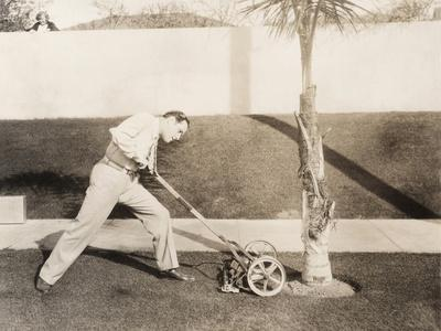 https://imgc.artprintimages.com/img/print/man-attacking-palm-tree-with-lawn-mower_u-l-q1bw6ky0.jpg?p=0