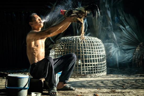 Man Cleaning Thai Gamecock- SantiPhotoSS-Photographic Print