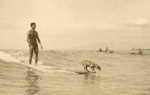 Man, Dog and Surfboard