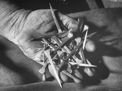 Man Holding Nails That Have Been Pulled from Old Horseshoes-Fritz Goro-Photographic Print