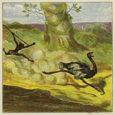 Man Hunting an Ostrich-Ernest Henry Griset-Giclee Print
