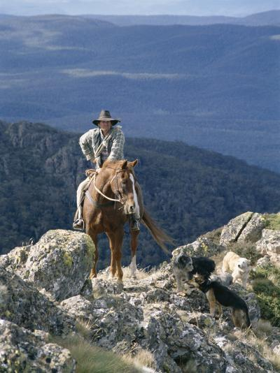 Man on Horse with Dogs, 'The Man from Snowy River', Victoria, Australia-Claire Leimbach-Photographic Print