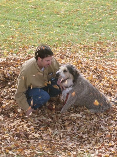 Man Playing with Dog in Autumn Leaves--Photographic Print