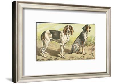 Man's Best Friend VI--Framed Art Print