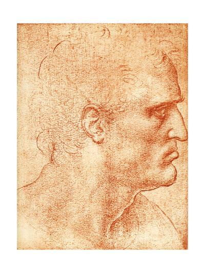 Man's Head-Sheila Terry-Giclee Print