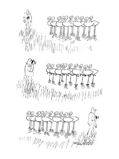 Man taking photograph of flamingoes, they all lift one of their feet. - New Yorker Cartoon-Mischa Richter-Premium Giclee Print
