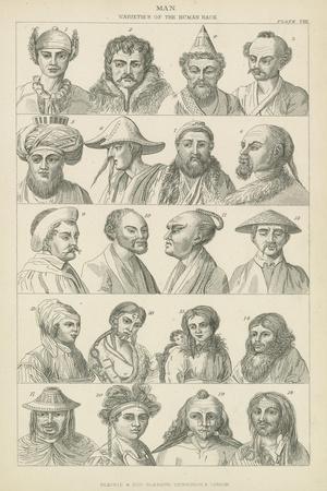 https://imgc.artprintimages.com/img/print/man-varieties-of-the-human-race_u-l-pvaqg20.jpg?p=0