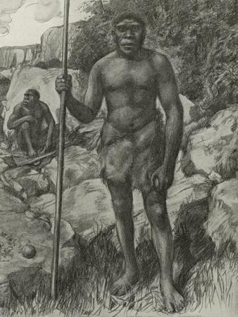 https://imgc.artprintimages.com/img/print/man-whose-skull-was-discovered-in-rhodesia-in-1921_u-l-ppw3ti0.jpg?p=0
