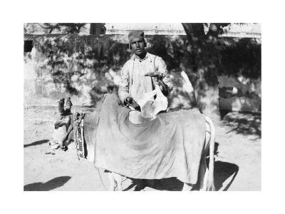 Man with a Deformed Cow, India, 1916-1917--Giclee Print