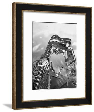 Man Working on Skeleton of a Tyrannosaurus at the American Museum of Natural History-Hansel Mieth-Framed Photographic Print