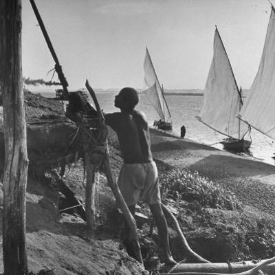 Man Working with Irrigation System as Sailboats Sit at Edge of Nile River at Wadi Halfa