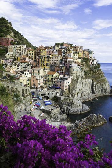 Manarola, Cinque Terre, UNESCO World Heritage Site, Liguria, Italy, Europe-Gavin Hellier-Photographic Print