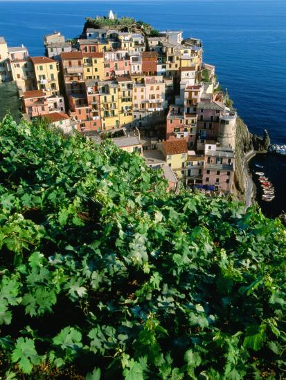Manarola Town from Above, Cinque Terre, Liguria, Italy-John Elk III-Photographic Print
