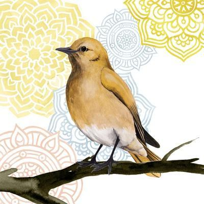 https://imgc.artprintimages.com/img/print/mandala-bird-ii_u-l-q19zhxp0.jpg?p=0