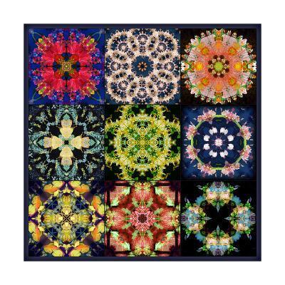 Mandala Collection No 17-Alaya Gadeh-Art Print