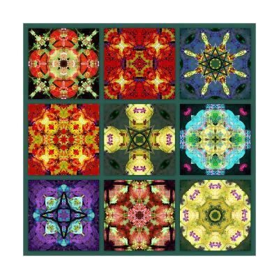 Mandala Collection No 2-Alaya Gadeh-Art Print