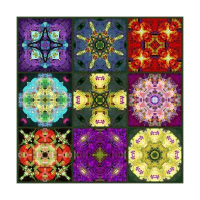 Mandala Collection No 7-Alaya Gadeh-Art Print
