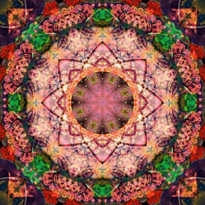 https://imgc.artprintimages.com/img/print/mandala-of-flower-photographies_u-l-q11zcpd0.jpg?p=0