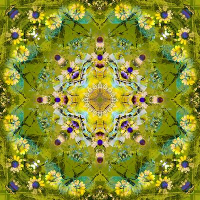 https://imgc.artprintimages.com/img/print/mandala-of-flower-photographies_u-l-q11zevc0.jpg?p=0