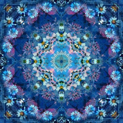 https://imgc.artprintimages.com/img/print/mandala-of-flower-photographies_u-l-q11zez70.jpg?p=0