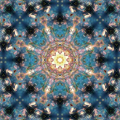 Mandala of Flower Photographies-Alaya Gadeh-Photographic Print