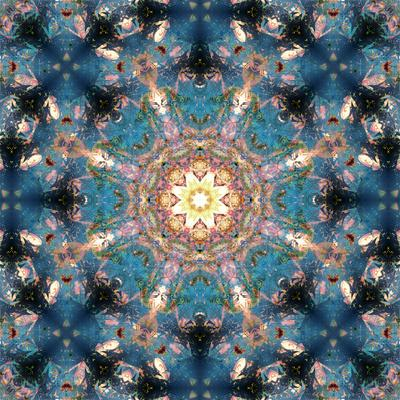 https://imgc.artprintimages.com/img/print/mandala-of-flower-photographies_u-l-q11zf0p0.jpg?p=0