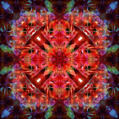 Mandala Ornament from Flower Photographs-Alaya Gadeh-Photographic Print