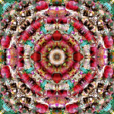 Mandala Ornament from Flower Photographs-Alaya Gadeh-Photographic Print