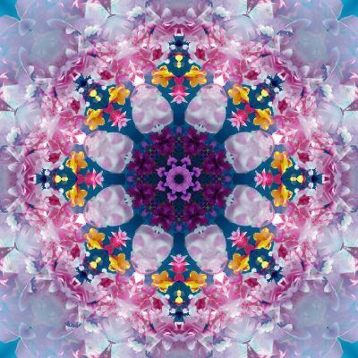 Mandala Ornament from Poeny Blossoms-Alaya Gadeh-Photographic Print