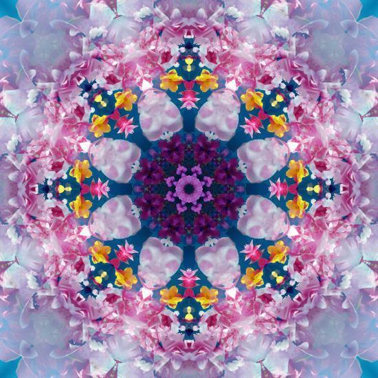 Mandala Ornament from Poeny Blossoms-Alaya Gadeh-Photographic Print