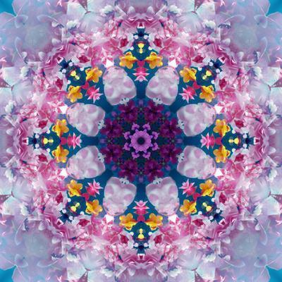 https://imgc.artprintimages.com/img/print/mandala-ornament-from-poeny-blossoms_u-l-q11z8pq0.jpg?p=0